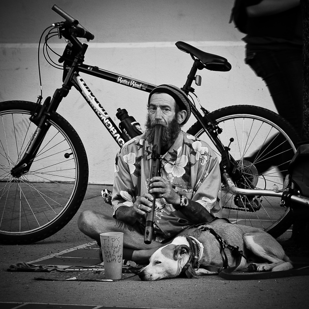 Busker plays recorder seeking tips to feed himself and his puppy